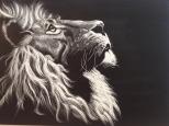 lion-1214837_1280.jpg